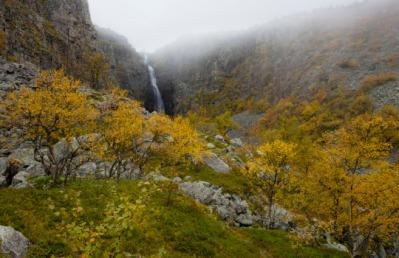 Fulufjällets National Park in Dalarna, Sweden